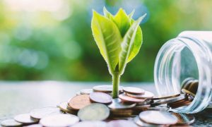 Linking investing to environmental concerns.
